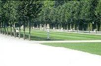 Gartenästhetik - Glossar zur Garten- und Landschaftsarchitektur